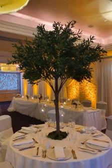 180cm Green Ruscus Trees Wedding Decoration