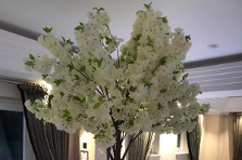 Ivory Blossom Trees 5ft Wedding Tables